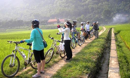 phương tiện di chuyển tiện nhất để bạn khám phá Mai Châu là xe đạp.