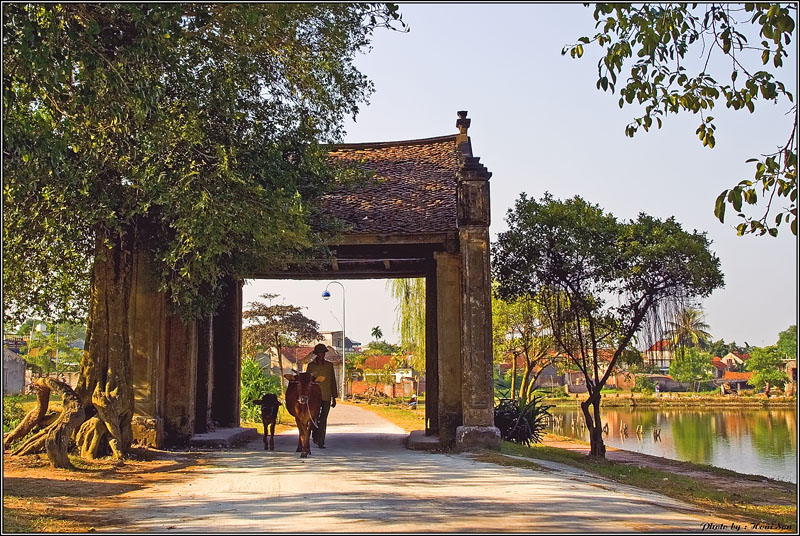 Sự thanh bình của làng cổ Đường Lâm
