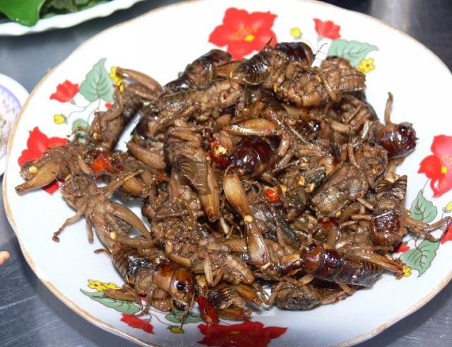 Ve sầu chiên, món ngon của Mai Châu.