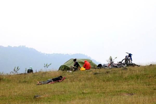 cắm trại, picnic