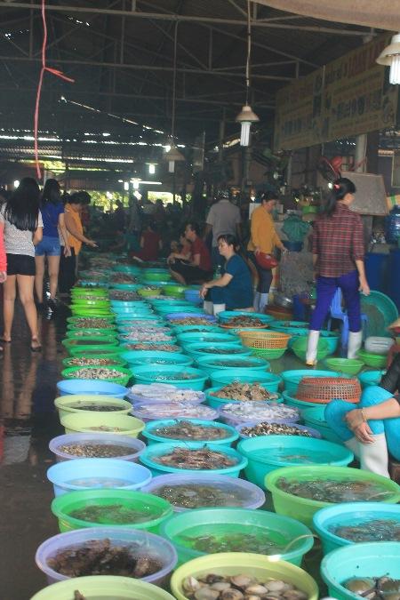 Ngày thường cũng như vào dịp lễ, chợ hải sản luôn là tâm điểm thu hút hàng nghìn du khách. Chợ đông đúc từ sáng đến chiều. Bạn cũng không lo bị thách giá khi mua hải sản, vì hầu hết người bán đều đưa ra mức giá phải chăng.