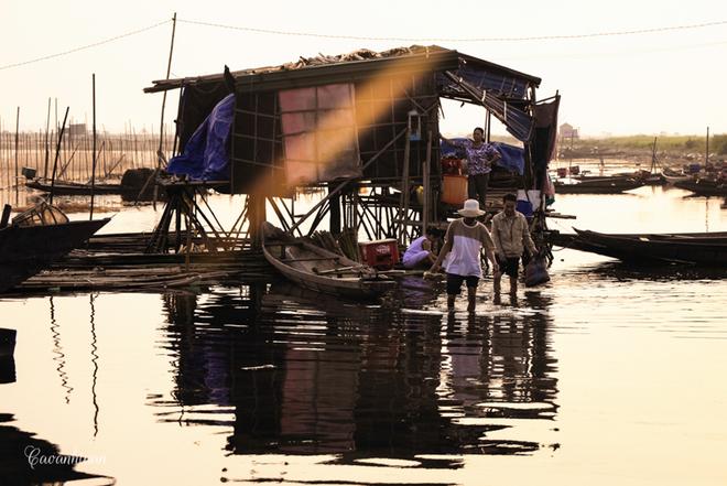 Một số gia đình còn cất chòi canh và ngủ đêm tại đây để trông chừng các đìa tôm, cá không bị mất trộm.