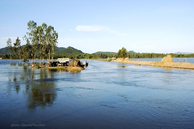 Mùa nước nổi đã về Gáo Giồng, vùng Đồng Tháp Mười. Chèo xuồng ba lá ngắt bông điên điển, câu cá và thưởng thức các món ăn đồng quê