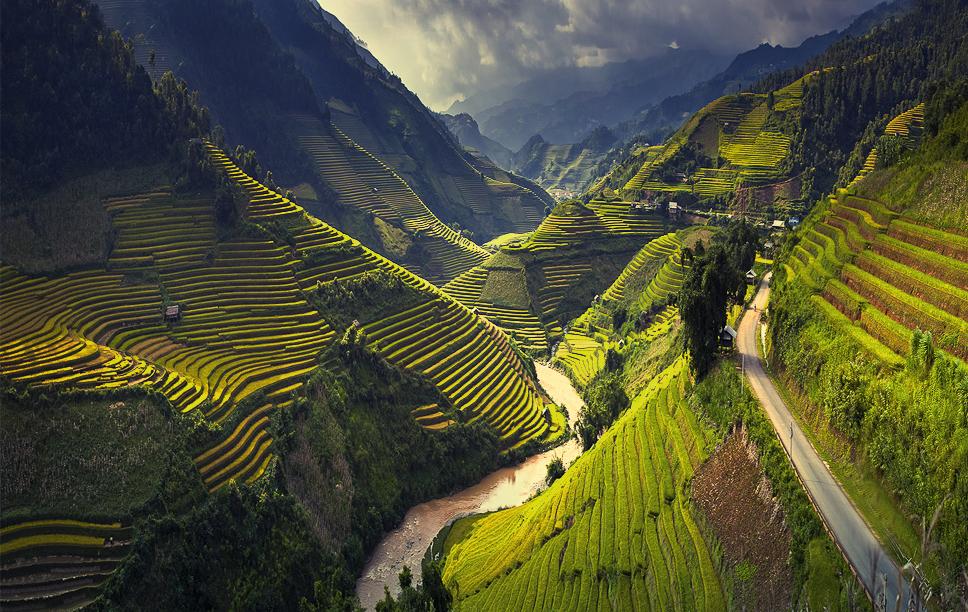 Ruộng bậc thang Hà Giang.
