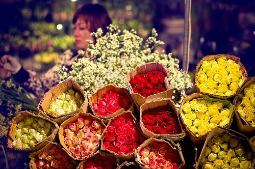 Điểm hẹn đêm của các loài hoa ở Hà Nội