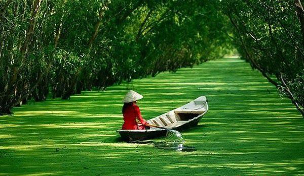 Du lịch ở đâu miền Tây mùa nước nổi?