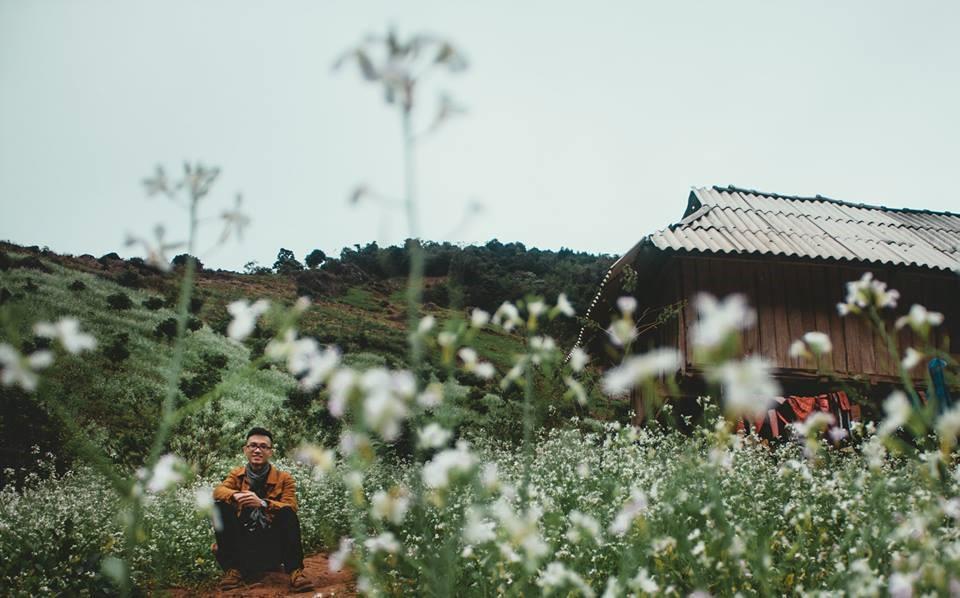Hoa cai phu sac trang khap nui doi Moc Chau hinh anh 8