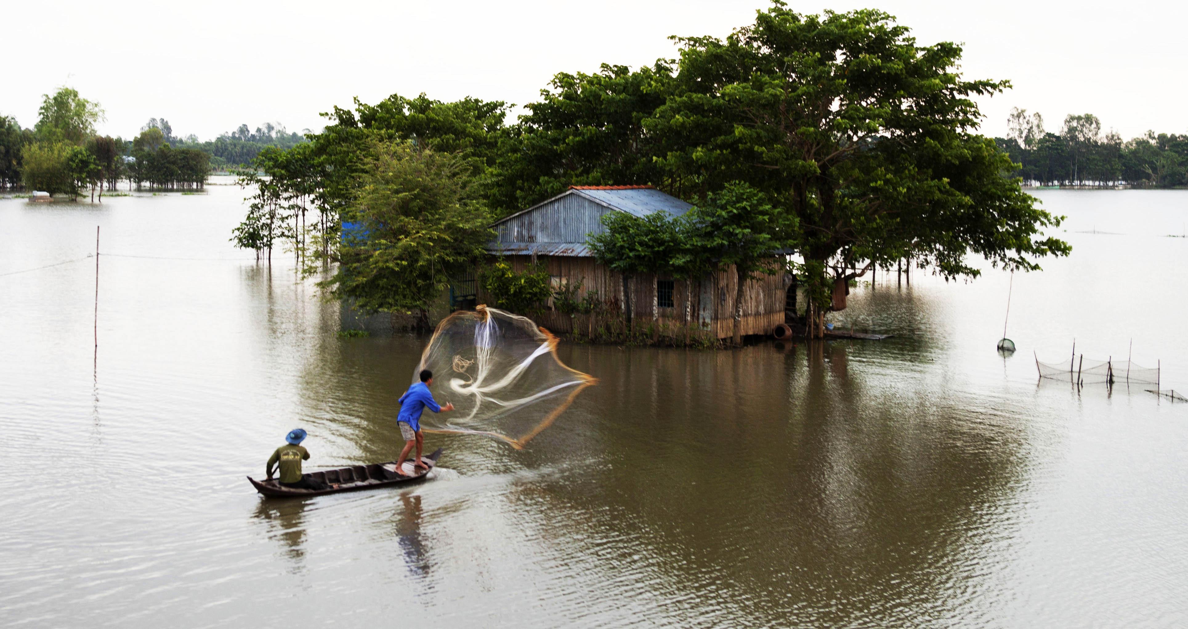 Về Đồng Tháp kháp phá vẻ đẹp mùa nước nổi