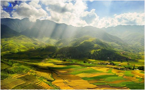 Đèo Khau Phạ – Điểm thưởng ngoạn ruộng bậc thang đẹp như mơ