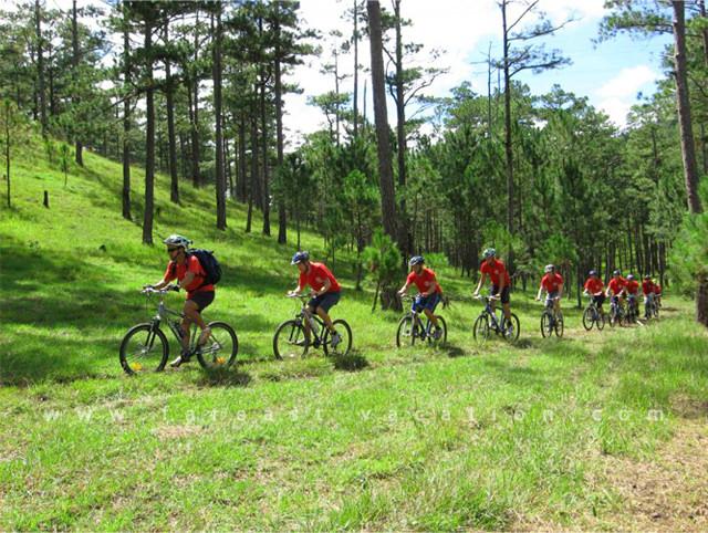 Đạp xe địa hình leo núi