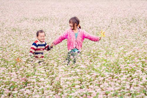 Khám phá những vùng hoa tam giác mạch đẹp nhất Việt Nam - 1
