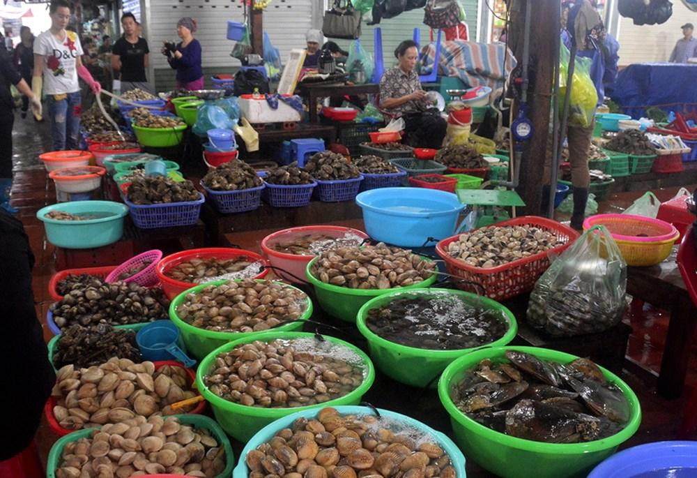 Các loại hải sản tươi ngon ở chợ Cát Bà