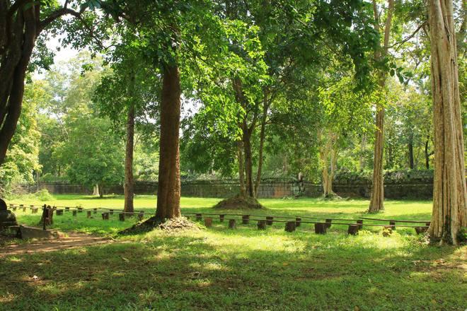 Khoảng không gian xung quanh ngôi đền chính rất đẹp với những cây cổ thụ lâu năm. Từng tia sáng lọt qua tán lá nhuốm màu của nắng lên nền đất cỏ khiến cảnh vật trở nên thanh bình, tĩnh tại.