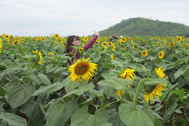 Nhiều bạn trẻ không tin rằng những bức ảnh đó được chụp ở Việt Nam.