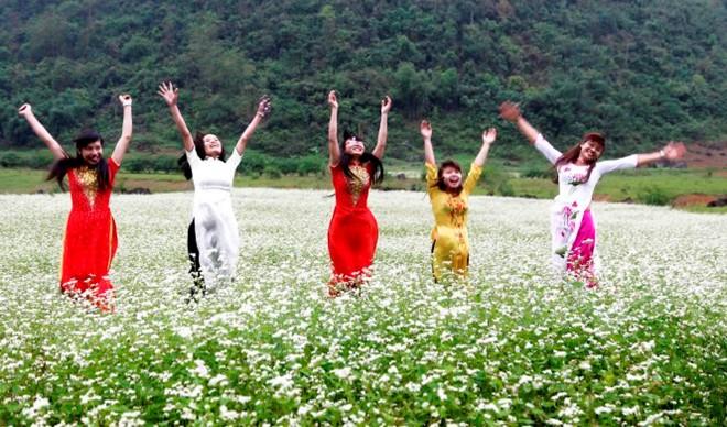 Lạc giữa thung lũng hoa tam giác mạch trắng xứ Lạng