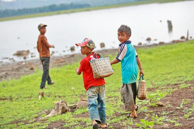 Các em nhỏ chăn bò đi dạo trên lòng hồ Ea Kao