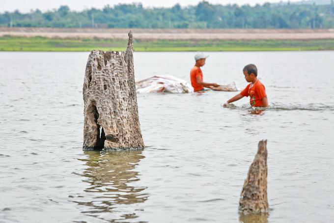 Những gốc cây khô cổ thụ còn sót lại trên lòng hồ Ea Kao