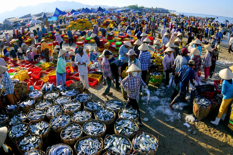 Chợ Cá Long Hải.