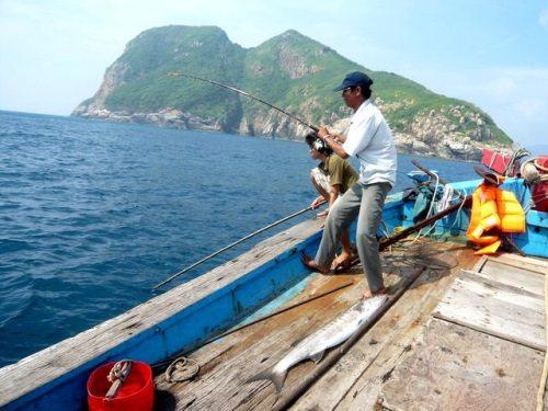 Câu cá trong chuyến tham quan An Thới.