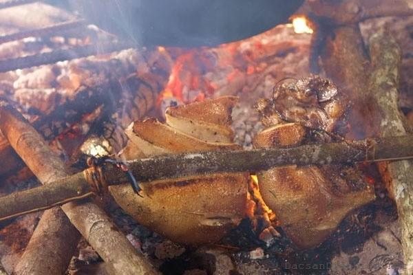 Lợn đen kẹp cây rừng nướng đặc sản Mù Căng Chải