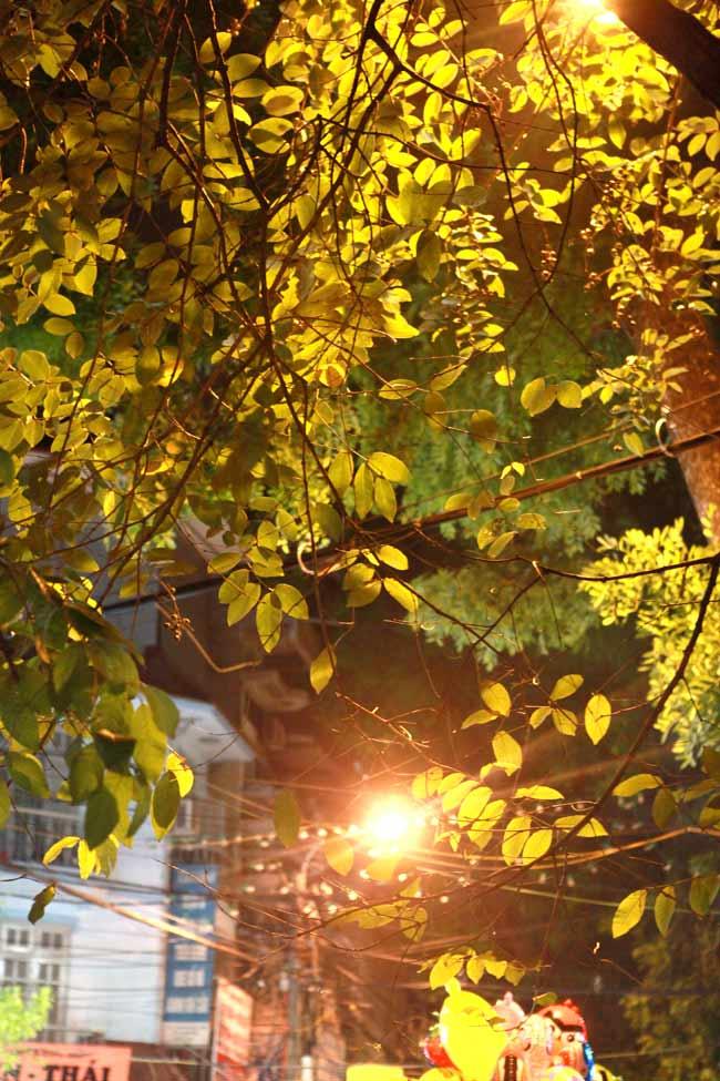 Ngắm Hà Nội thơ mộng, óng vàng mỗi chiều thu qua - 11