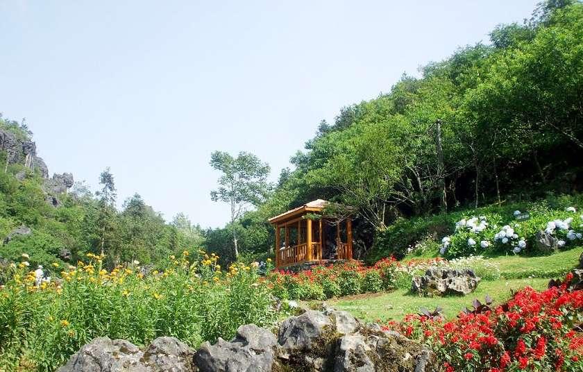 Núi Hàm Rồng - điểm du lịch hấp dẫn ở Sapa.