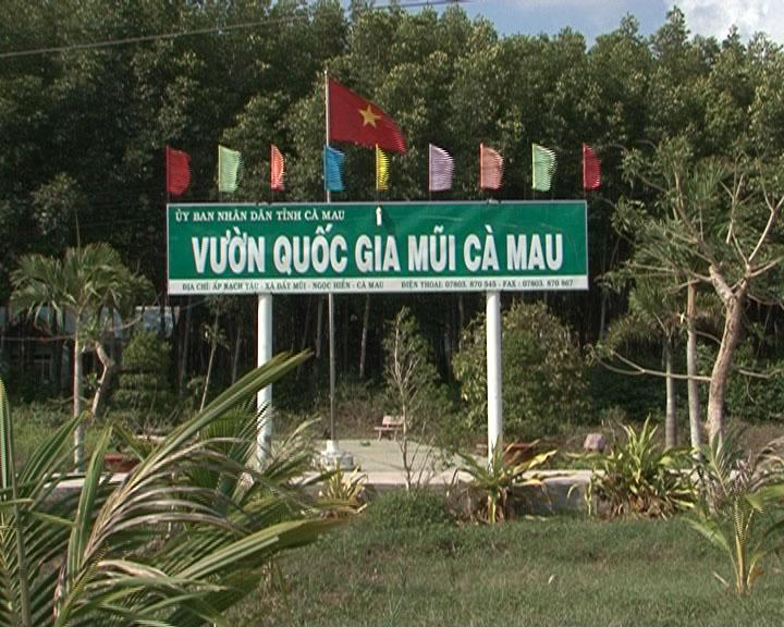 Vườn Quốc Gia Mũi Cà Mau.