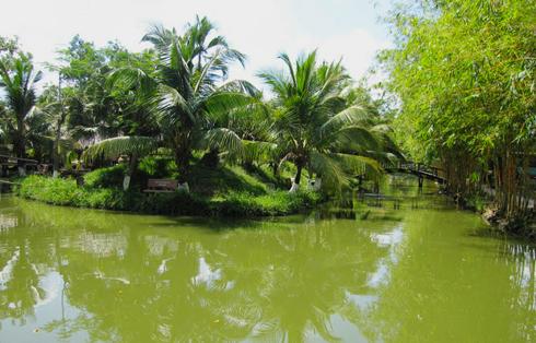 Những dòng kênh xanh mướt uốn lượn mang đến cảm giác thanh bình cho khu du lịch Bình Mỹ. Ảnh: dulichbinhmy.