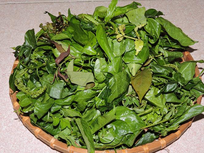 Những cọng rau non mơn mởn làm nguyên liệu chế biến thành nhiều món ngon dân dã