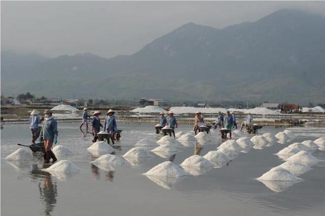 Ruộng muối trắng xóa bên vịnh Vân Phong