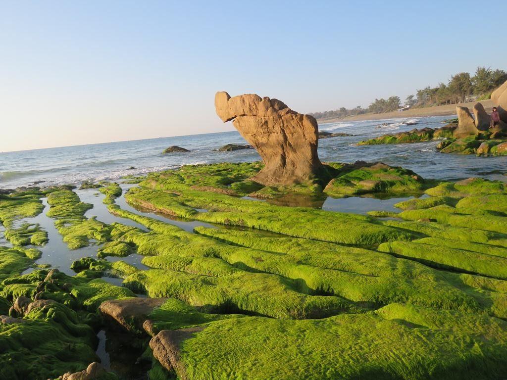 Biển và bãi đá Cổ Thạch