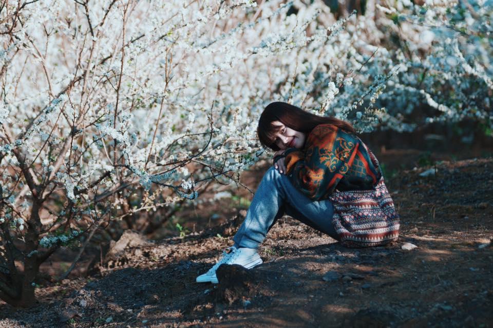 Giới trẻ chụp ảnh cùng hoa mận