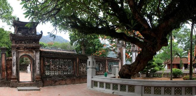 Cũng như các di tích khác thuộc cố đô Hoa Lư, đền Vua Đinh nằm trong quần thể di sản văn hóa và thiên nhiên thế giới Tràng An được UNESCO công nhận năm 2014.