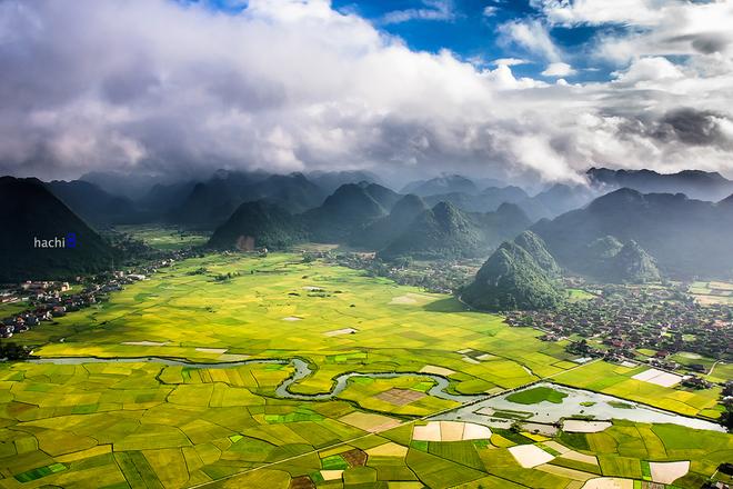 Mây núi hòa quyện và khung cảnh mùa lúa vàng tạo nên một bức tranh đồng quê tuyệt đẹp.