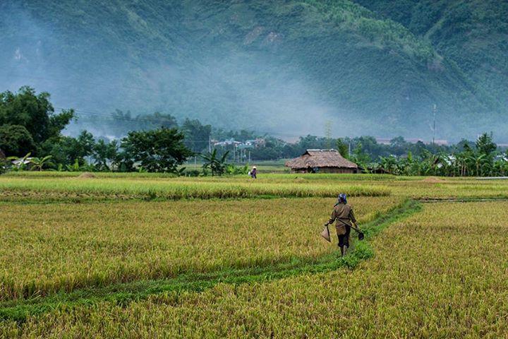 7 địa điểm du lịch bụi lý tưởng miền Trung và miền Nam - Đi du lịch Việt Nam phần 1