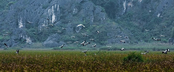 7 địa điểm du lịch bụi lý tưởng miền Trung và miền Nam - Đi du lịch Việt Nam phần 2