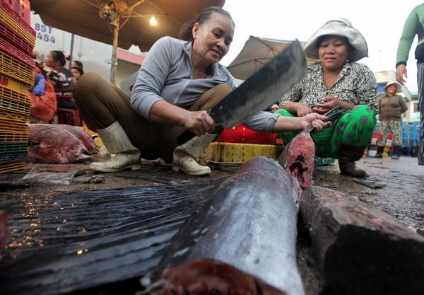 Những con cá cờ còn tươi nguyên được cắt ra từng khúc nhỏ