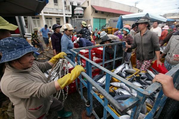 Cá từ chợ cá Hàm Tử được vận chuyển đi các nơi tiêu thụ