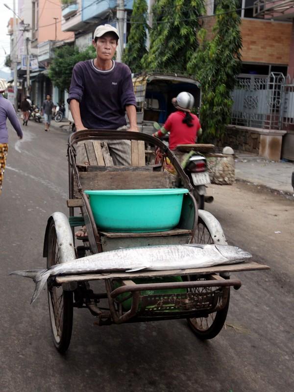Cá từ chợ cá Hàm Tử được vận chuyển đi các nơi tiêu thụ 3