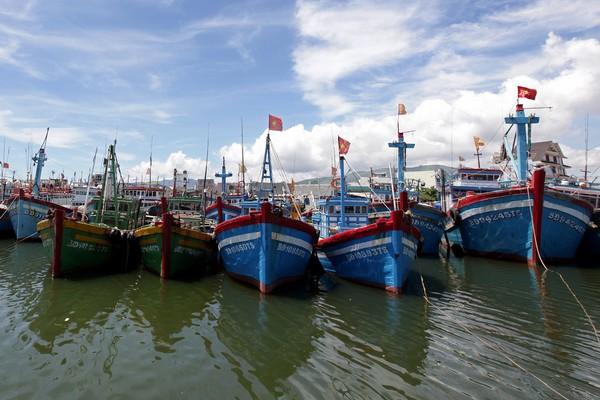 Đoàn thuyền đánh cá của Quy Nhơn trong những ngày ngơi nghỉ
