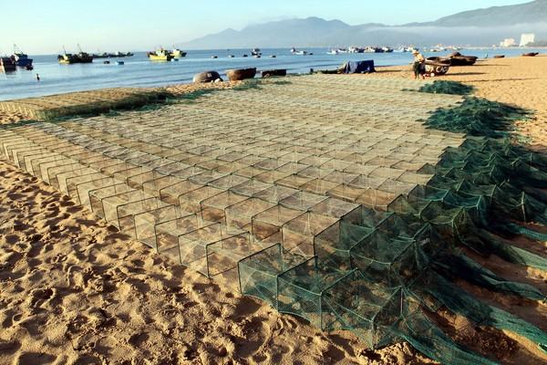 Lờ dùng để đánh bắt tôm được phơi trên bãi biển sau khi thu hoạch