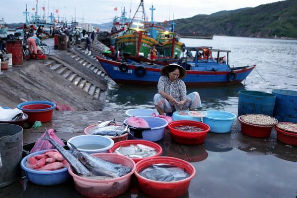 Thành quả của các ngư dân sau một đêm đánh bắt ngoài khơi