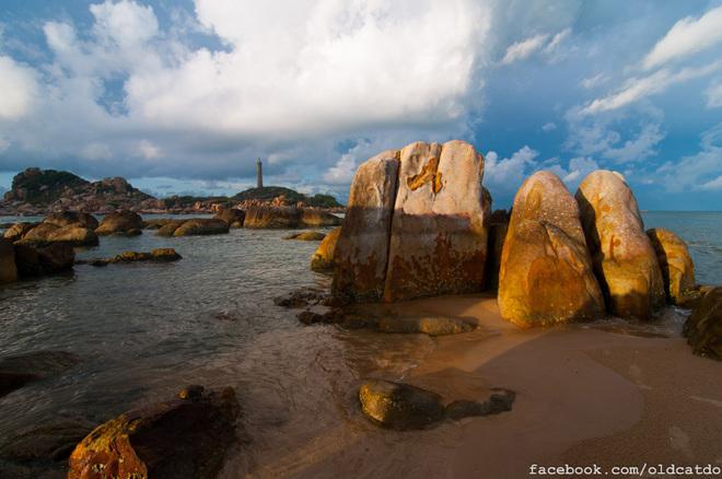 Từ bờ biển nhìn ra Hải đăng có rất nhiều khối đá lớn với đủ các hình thù lạ mắt