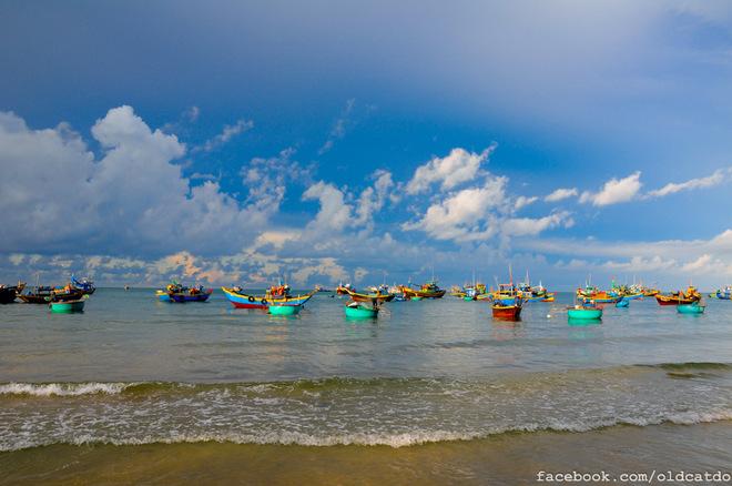 Khi trời hửng sáng từng đoàn thuyền lại ra khơi cho những chuyến đi đánh bắt cá