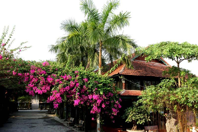 Thanh Lâm Resort.