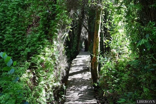 Kinh nghiệm du lịch bụi tại Đồng Tháp - Đi du lịch Đồng Tháp phần 2