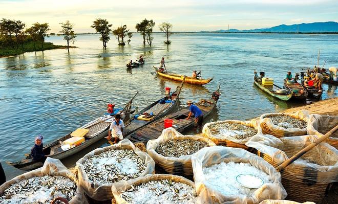 Miền Tay Tuyệt đẹp Trong Triển Lam ảnh Mua Nước Nổi Dulich24