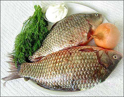 Cá chép làm nên gỏi cá Tân Mai được chọn kỹ để cho thứ thịt mịn, ngọt