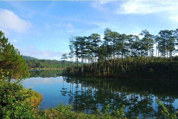 Hồ Tuyền Lâm.