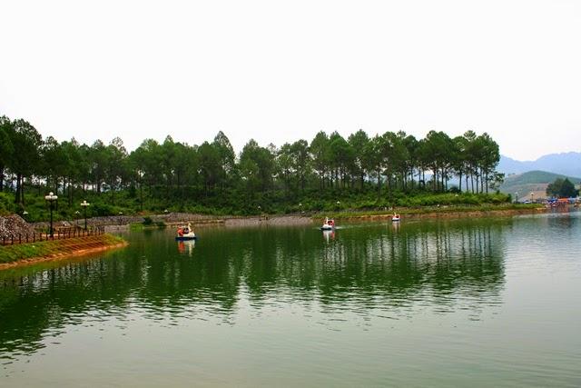 Rừng thông Bản Áng - Điểm du lịch Mộc Châu hấp dẫn.